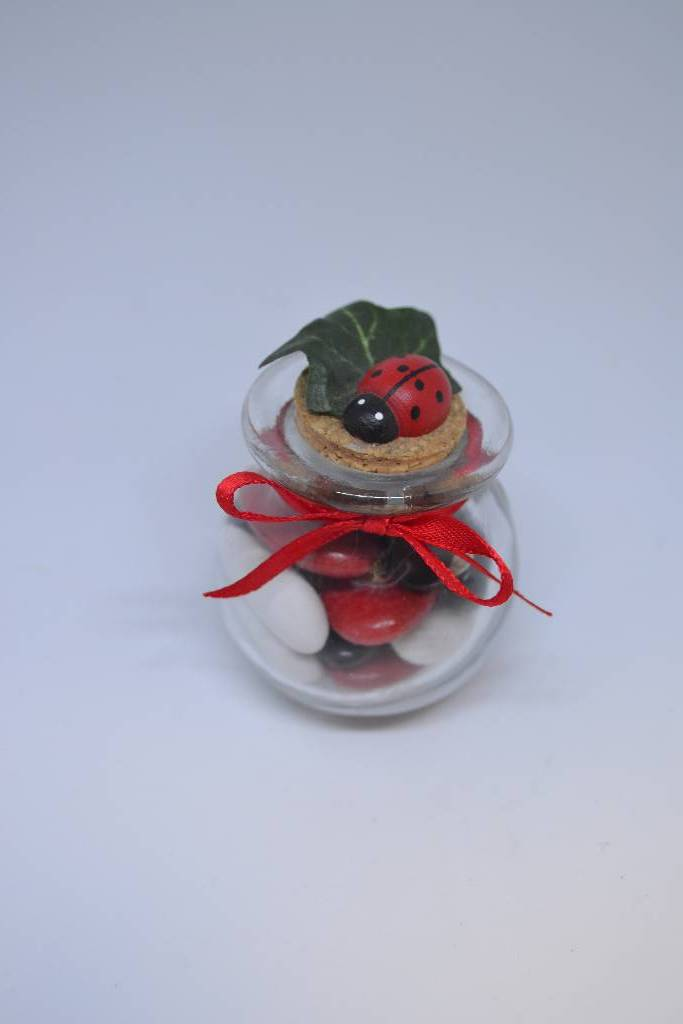 kit à dragée pot en verre  coccinelle festival de la dragée